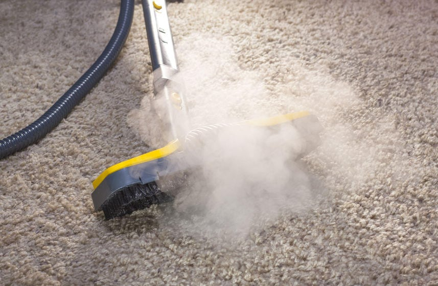 carpet cleaning service in NY